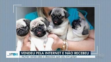 Mulher vende cães pela internet e é vítima de golpe em Goiânia - Tem muito golpe rolando nos sites e nas redes sociais. Nem cachorro está escapando.