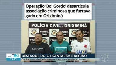 Prisão de pessoas que furtavam gado para comercializar é destaque no G1 Santarém e Região - Veja essa e outras notícias pelo celular, computador e tablet.