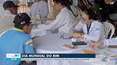 Dia Mundial do Rim - Quando os sintomas aparecem, a doença já está em estágio avançado.