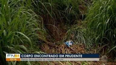 Homem é encontrado morto em Presidente Prudente - Perícia deve apontar as causas da morte.