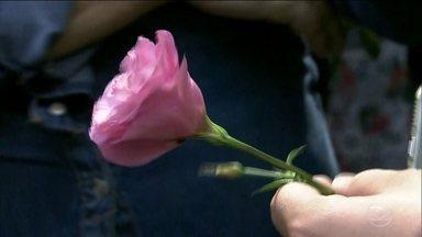 Alunos voltam às aulas na escola onde ocorreu o massacre de Suzano - Eles foram recebidos com muitos abraços, carinho e flores. O nome dos que se foram estão na frente da escola, para que nunca seja esquecido o que ocorreu ali.