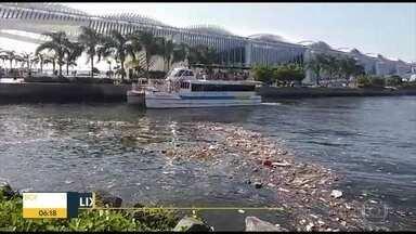 Lixo invade Baía de Guanabara em frente ao Museu do Amanhã - Telespectadora faz registro de grande quantidade de dejetos boiando às margens da Baía de Guanabara.