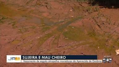 Moradores reclamam de esgoto vazando no Parque Hayala, em Aparecida de Goiânia - Mau cheiro incomoda quem vive no local.