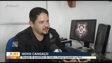 Bancos são alvos de quadrilhas especializadas no interior do Pará - Em 2019 já foram oito assaltos à banco registrados no Estado.