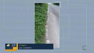 Moradores denunciam rodovia sem calçada e acostamento para pedestres em Igrejinha - Autoridades responsáveis afirmam estar preparando projeto para resolver o problema.
