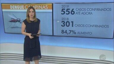 Campinas confirma 556 casos de dengue em 2019 - Prefeitura deve realizar coletiva de imprensa para tratar do assunto ainda nesta terça-feira (26).