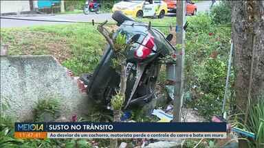 Motorista perde o controle do carro ao tentar desviar de cachorro - Ninguém ficou ferido.