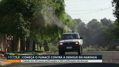 Maringá recorre ao fumacê para controle de focos do mosquito da dengue - Cidade tem 40 casos confirmados e 520 notificações da doença.