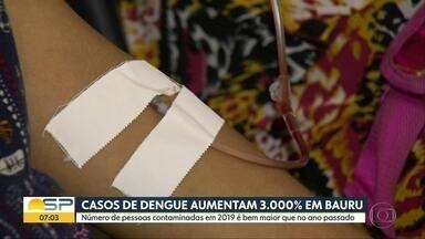 Casos de dengue aumentam 3.000% em Bauru - Número de pessoas contaminadas em 2019 é bem maior que no ano passado