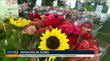 Começa Expoflor, em Paranavaí, com mais de 10 mil flores - Pra visitar a tradicional exposição de flores é só ir na Praça dos Pioneiros, todos os dias, das 9h às 21h, até dia 14/05