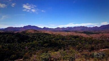Reserva privada de Cerrado tem 32 mil hectares e três rios, em Niquelândia - Segundo o gerente do Legado Verdes do Cerrado, reserva privada é a maior do Brasil e tem 80% da área preservada. Área tem turismo, cultivo de soja e criação de gado.