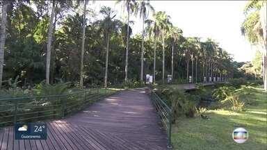 Zoológico e Jardim Botânico poderão ser administrados pela inciativa privada - O governador João Doria anunciou no Palácio dos Bandeirantes a intenção de conceder o Jardim Zoológico e o Jardim Botânico à iniciativa privada.