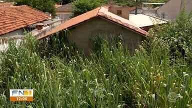 Prefeitura intensifica notificações de donos de terrenos abandonados - Imóveis sem limpeza causam transtornos aos moradores vizinhos em Presidente Prudente.