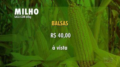 Veja a cotação dos grãos e do boi gordo no Maranhão - Em Bacabal, a cotação do boi fechou a R$ 146 à vista e R$ 149 a prazo. Já na cotação dos grãos, a saca de soja com 60kg foi negociada a R$ 68 à vista, enquanto a do milho subiu para R$ 40.