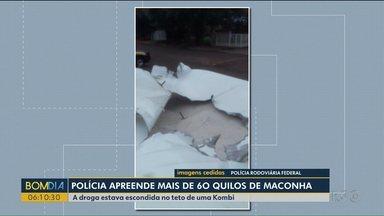 Polícia apreende mais de 60 quilos de maconha - A droga estava escondida no teto de uma Kombi.