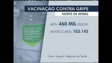 Mais de 460 mil pessoas devem receber vacina contra gripe no Norte de Minas - Campanha nacional começa no dia 10 de abril.