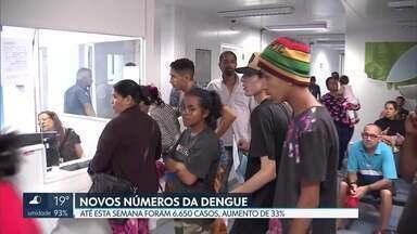 Secretaria de Saúde divulga novo boletim com números da dengue no DF - Em 2019, foram 7.575 notificações da doença. Oito pessoas morreram. São Sebastião é a cidade com mais casos de dengue.
