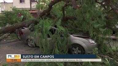 Galhos de árvore caem sobre carro com duas pessoas dentro em Campos - Acidente aconteceu no domingo (14) no Parque Turf Clube. Ninguém ficou ferido.