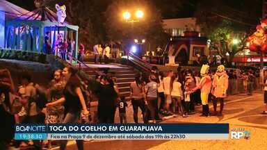 Toca do coelho ficará até sábado em Guarapuava - O local foi montado e decorado especialmente para esta semana de páscoa.