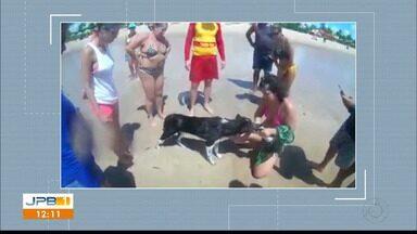 Bombeiros são chamados e resgatam animal na Praia do Cabo Branco - Cachorrinha entrou no mar e se distanciou demais. Mulher pediu ajuda aos Bombeiros.