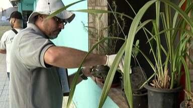 Suzano realiza ações de combate à dengue em bairros da cidade - O telefone do Departamento de Controle de Zoonoses é o 4745-2064.
