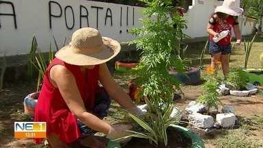 Moradores de bairro em Itamaracá transformam área abandonada - Eles se revezam no cuidado com as plantas na Rua Algas Marinhas.