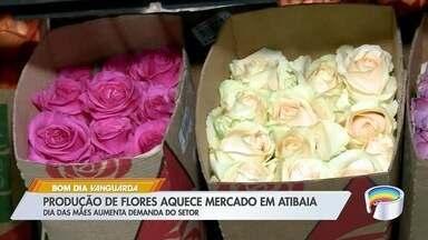 Produção de flores aquece mercado em Atibaia - Expectativa é boa para o Dia das Mães.