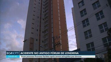Acidente no antigo Fórum de Londrina deixa duas pessoas feridas - Parte do piso superior do prédio caiu e derrubou uma árvore