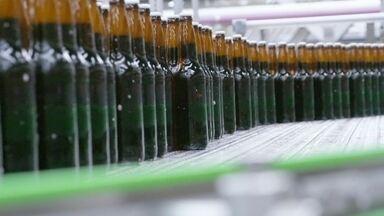 Hoje é dia de cerveja: a indústria - Os caminhos do malte e do lúpulo até o seu copo.