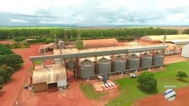 Censo feito pela Conab mostra deficit de armazenagem de 42% em Mato Grosso. - A Logística de armazenagem de grãos ainda é um desafio em Mato Grosso. A produção de grãos de cresceu em quase 10 anos 125%, e de acordo com o censo realizado pela Conab a capacidade de armazenamento cresceu no mesmo período apenas 18%