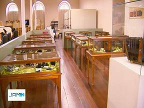 Seminário sobre Mercado Adolpho Lisboa encerra Semana Nacional dos Museus nesta sexta - Evento será ministrado pelo historiador Otoni Mesquita.