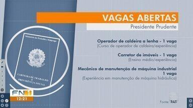 Confira as oportunidades de emprego disponíveis em Presidente Prudente - Trabalhadores podem procurar o PAT, na Vila Marcondes, e a Sedepp, no Jardim Bongiovani.