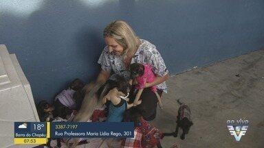 Campanha do agasalho arrecada roupas para animais domésticos - Campanha metropolitana será lançada na próxima quarta-feira (29).