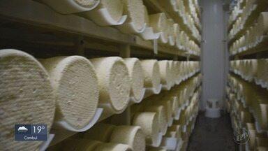 G1 destaca os benefícios do queijo para a saúde - G1 destaca os benefícios do queijo para a saúde