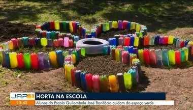 Comunidade do Curiaú criam projeto para cuidar da terra com uma horta - Alunos da Escola Quilombola José Bonifácio cuidam do espaço verde