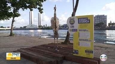 Projeto Cidade Limpa destaca perigos de lixos descartados incorretamente - Esculturas com materiais recolhidos do lixo ganham lugar na cidade do Recife.