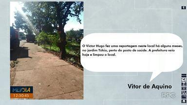 Prefeitura recolhe galhos mostrados no Meio Dia Paraná depois de quatro meses - A situação foi mostrada ao vivo em janeiro. Telespectador mandou foto mostrando que a situação foi resolvida, mas depois de muito tempo.