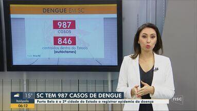 Número de casos de dengue em SC chega a 987 em 2019 - Número de casos de dengue em SC chega a 987 em 2019