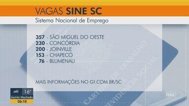 Sine tem mais de 1,3 mil vagas de emprego disponíveis em Santa Catarina - Sine tem mais de 1,3 mil vagas de emprego disponíveis em Santa Catarina