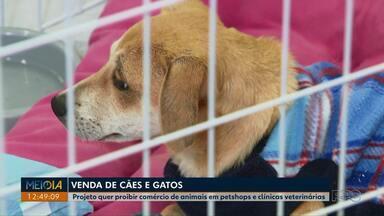 Projeto quer proibir comércio de animais em petshops e clínicas veterinárias do Paraná - Pelo projeto apenas quem tem criador regularizado poderá vender os animais.