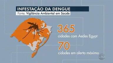 Rio Grande do Sul registra infestação de dengue, mosquito está presente em 365 cidades - Porto Alegre é o município do estado com maior número de pessoas infectadas com a doença.