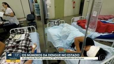 Balanço atualizado da dengue no estado de São Paulo: 267.602 casos e 157 mortes - Bauru lidera número de mortes, seguida por São José do Rio Preto