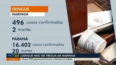 Aumenta o número de mortes por dengue no Paraná - Das 20 mortes por dengue no estado, 2 foram registradas em Maringá.