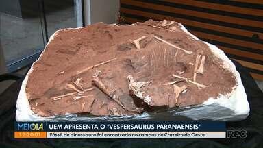 Universidade Estadual de Maringá apresenta fóssil inédito de dinossauro - Vespersaurus paranaensis foi encontrado no campus de Cruzeiro do Oeste.