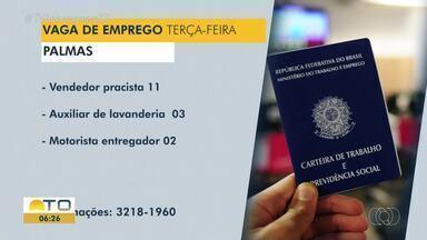 Veja as vagas de emprego disponíveis em Palmas, Porto Nacional e Gurupi - Veja as vagas de emprego disponíveis em Palmas, Porto Nacional e Gurupi