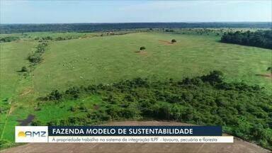Fazenda no Vale do Jamari tem certificação máxima de sustentabilidade - Produção de gado de corte e grãos é aliada à preservação ambiental