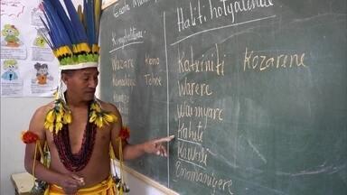 Estudantes indígenas de universidade de Mato Grosso aprendem a dar aulas em suas aldeias - Cursos da Unemat ajudam na preservação das línguas indígenas