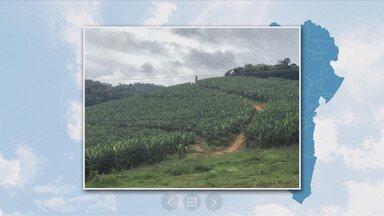 Município de Teolândia tem 13% de chance de chuva - Confira as informações da previsão do tempo.