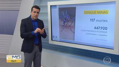 Governo confirma primeira morte por chikungunya em 2019, em MG; dengue matou 117 - Óbito por chikungunya aconteceu em Patos de Minas, no Centro-Oeste do estado.