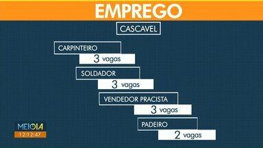 Veja quais são as vagas de emprego para Cascavel nesta sexta-feira (19) - Agência do Trabalhador fica na Rua Paraná, 3648.